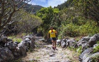 Aktivitäten  Coral Los Silos - Your Natural Accommodation Choice